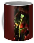 Praying Mantis Portrait Coffee Mug
