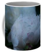 Pre Dawn Rain Coffee Mug