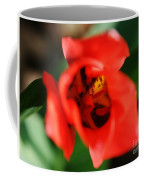 Pre-pollination  Coffee Mug