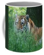 Predator In The Grass Coffee Mug