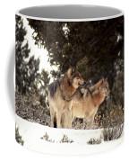 Predators Coffee Mug