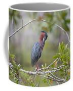 Preening Greenie Coffee Mug