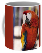 Pretty Bird 2 Coffee Mug