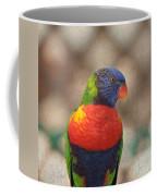 Pretty Bird - Rainbow Lorikeet Coffee Mug