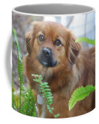 Pretty Girl Coffee Mug