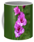 Pretty Gladiolus Coffee Mug