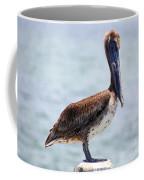 Pretty Gulf Pelican Coffee Mug