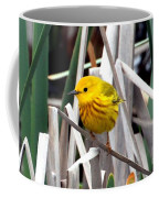 Pretty Little Yellow Warbler Coffee Mug