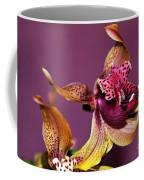 Pretty Orchid On Pink Coffee Mug