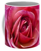 Pretty Pink Muted Coffee Mug