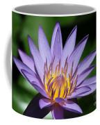 Pretty Purple Petals Coffee Mug
