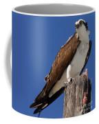 Prey For The Osprey Coffee Mug