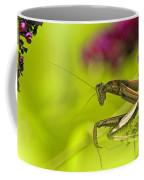 Preying Mantis Coffee Mug