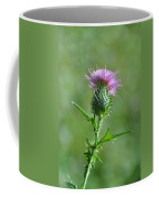 Prickle-me-not Coffee Mug