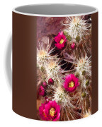 Prickley Cactus Plants Coffee Mug