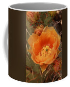 Prickly Pear Cactus Blooming In The Sandia Foothills Coffee Mug