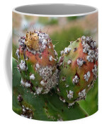 Prickly Pear With Cochineal Bugs Coffee Mug
