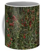 Prickly Pete Cactus Coffee Mug