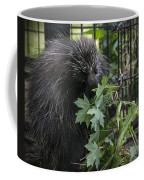 Prickly Pete Coffee Mug