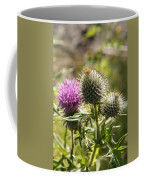 Prickly Youth Coffee Mug