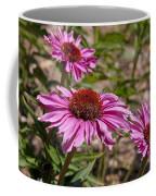 Primadonna Deep Rose Echinacea Coffee Mug
