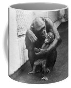 Primate Discipline Coffee Mug