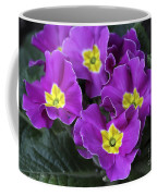 Primrose Purple Coffee Mug