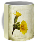 Primula Pacific Giant Yellow Coffee Mug by John Edwards