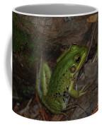 Prince Charming Coffee Mug