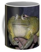 Prince Frog Hands Coffee Mug