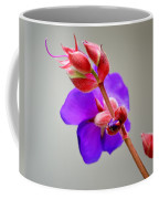 Princess Flower Blooms Coffee Mug