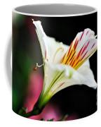 Princess Lily Awakening Coffee Mug