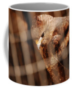 Prisoner Hawk  Coffee Mug
