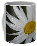 Pristine... Coffee Mug