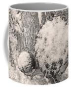 Proche Coffee Mug