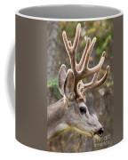Profile Of Mule Deer Buck With Velvet Antler  Coffee Mug