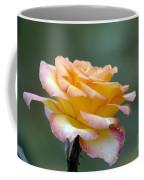 Profile View Yellow And Pink Rose Coffee Mug