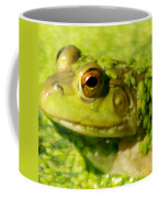 Profiling Frog Coffee Mug by Optical Playground By MP Ray