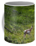 Pronghorn Antelope Among Wildflowers Coffee Mug