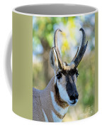 Pronghorn Antelope Portrait Coffee Mug