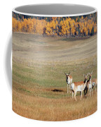 Pronghorn In The Park Coffee Mug