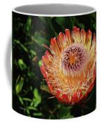 Protea Flower 2 Coffee Mug