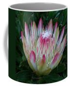 Protea Flower Coffee Mug