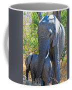 Protective Mother Elephant In Kruger National Park-south Africa Coffee Mug
