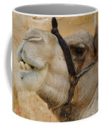 Proud Bou Bou Camel Sinai Egypt Coffee Mug