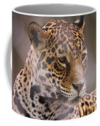Out Of Africa Coffee Mug