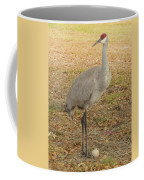 Proud Of First Egg II Coffee Mug
