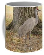 Proud Of First Egg Coffee Mug