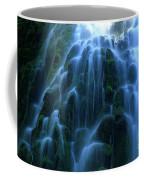 Proxy Falls Detail 2 Coffee Mug