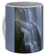 Proxy Falls Coffee Mug